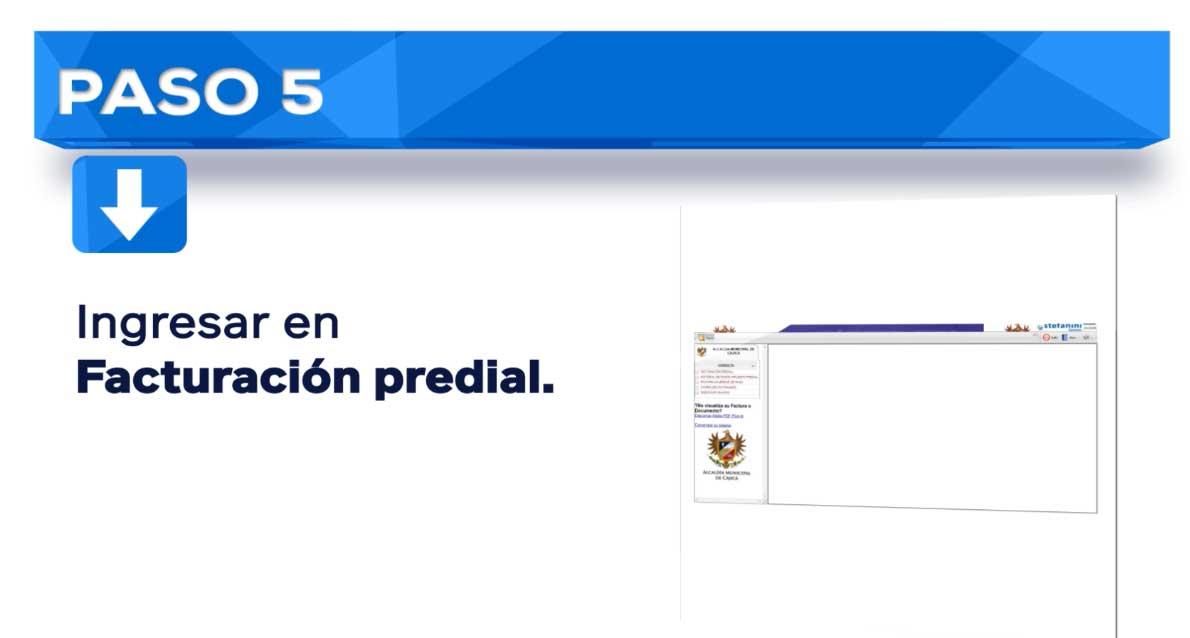 Impuesto Predial Cajica paso 5